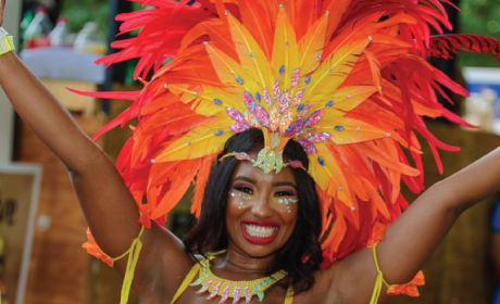 free pre caribbean carnival party smdcac