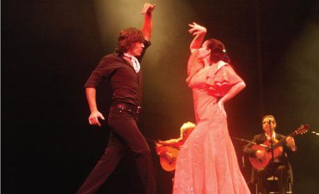Siempre Flamenco, Flamenco, Dance